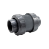 "2-1/2"" Socket Check Valve with FKM O-Ring"