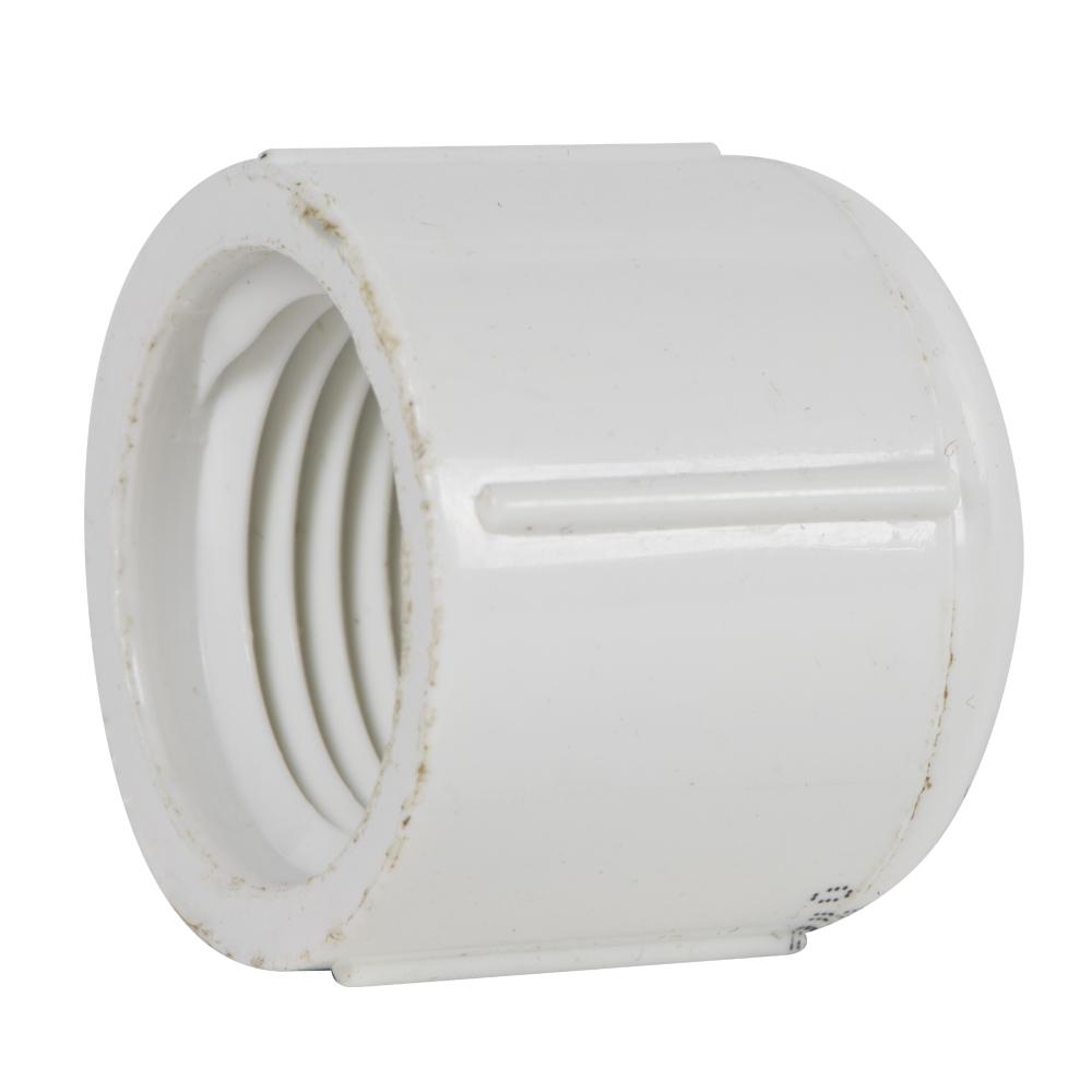 "1/2"" Schedule 40 White PVC Threaded Cap"