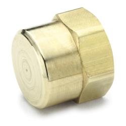 "1/2""FPT Brass Cap"