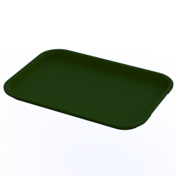 "10"" x 14"" Green Food Service Tray"