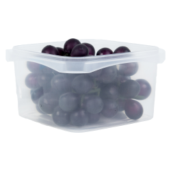 32 oz. Square Polypropylene Tamper Evident Container (Lid Sold Separately)