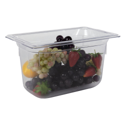 3.8 Quart Clear Polycarbonate Low Temperature 1/4 Food Pan (Cover Sold Separately)