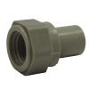 """1/2"""" PP-Pure® Pigmented Polypropylene Female Adapter"""