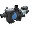 2 HP Hayward® LifeStar™ MV Medium Head Aquatic Pump with 1 Phase 208-230v TEFC Motor
