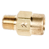 "1/8"" FNPT x 1/8"" MNPT Series 210 Brass Check Valve with Viton™ Seals - 1 PSI"