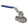 "1/4"" FNPT 304 Stainless Steel Ball Valve"