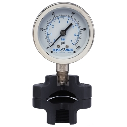 "0-60 psi CPVC Gauge Guard with 2.5"" SS Gauge and FKM Diaphragm"