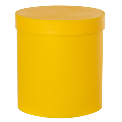 Yellow Roundabout Container with Lid