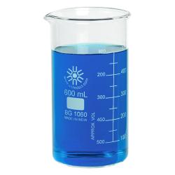 600mL Tall Form Borosilicate Glass Berzelius Beaker with Spout